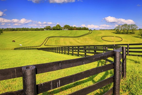 The Five Best Fence Types For Horses
