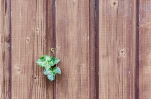 Wood Fence Maintenance Tips for Virginia Homeowners