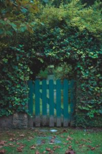 Fence Gate Series Part 3: Factors to Consider When Choosing a New Fence Gate