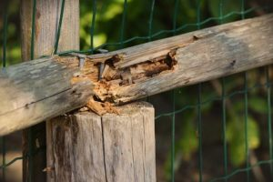 Why a DIY Wood Fence Isn't a Good Idea