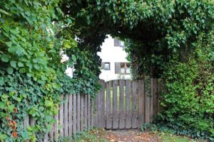 Maintenance Tips for Your Wood Fence Gate