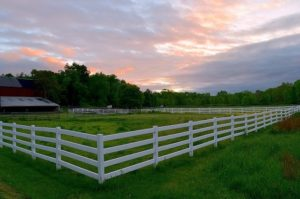 Split Rail Fences: Rustic Charm with Widespread Appeal