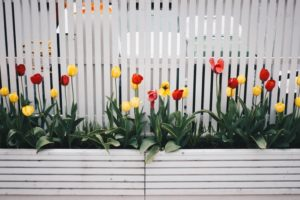 Benefits of Commercial Fencing for Businesses and Their Visitors