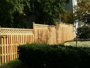 dog fence Richmond