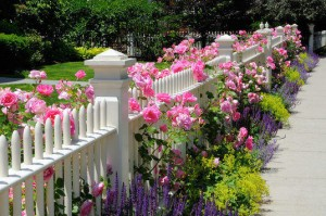 Residential Fence Mistakes